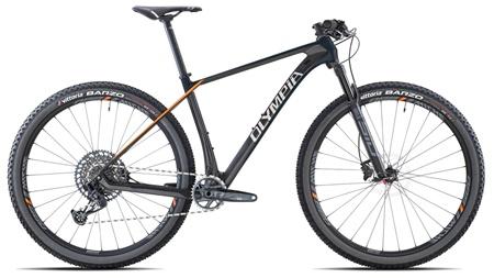 "Picture for category Gorska kolesa 29"""